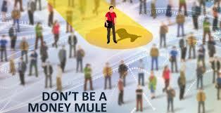 money-mule-paranomo-xrima-astinomia-eurorpol-2