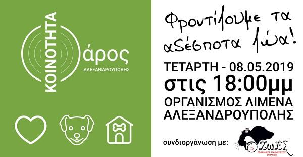 Αλεξανδρούπολη: Ενημερωτική εκδήλωση του Φάρου για τα αδέσποτα ζώα